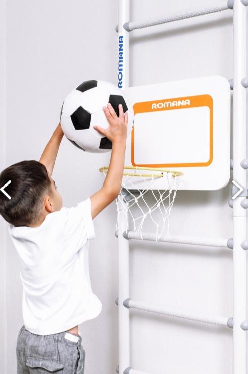 romana dop12 shhit basketbolnyj 2